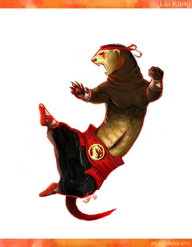 Ferret Mortal Kombat Art