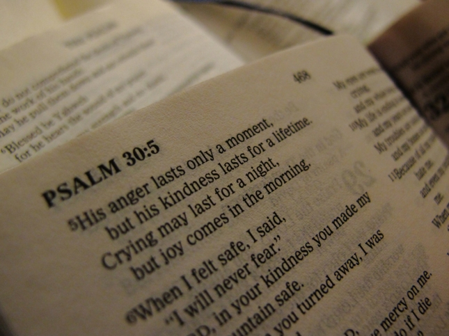 Psalm 30:5 - His Anger May Last A Moment, But His Favor Lasts A Lifetime