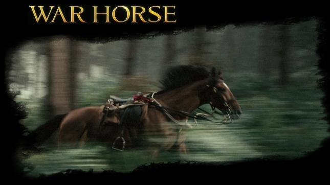 Warhorse Wallpaper (Movie)