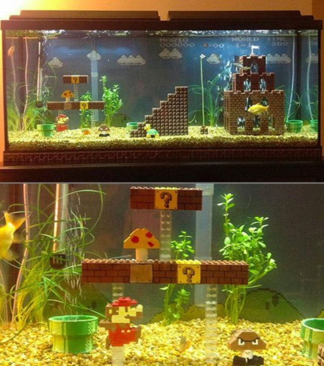 Epic Super Mario Bros Fishtank