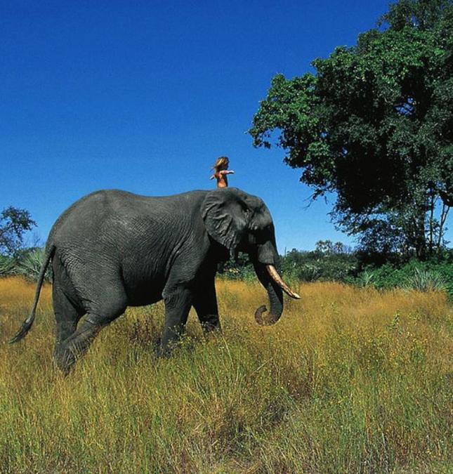Little Girl Rides Elephant Tippi of Africa