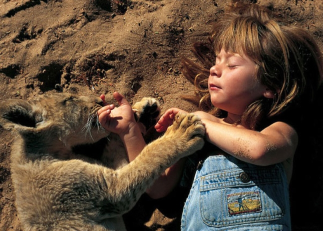 Little Girl With Sleeping Lion Cub Tippi of Africa